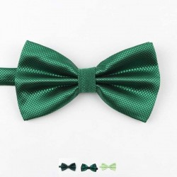 Noeud Papillon Vert - Brillant