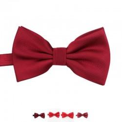 Noeud Papillon Rouge - Brillant