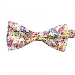 Noeud Papillon Multicolore